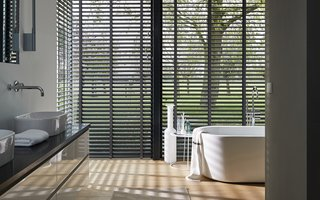 Venetian Blinds - Couture collection designs